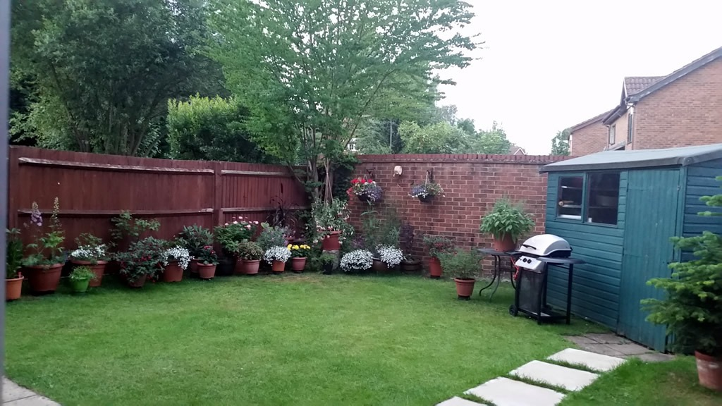 Lory Ridge Garden